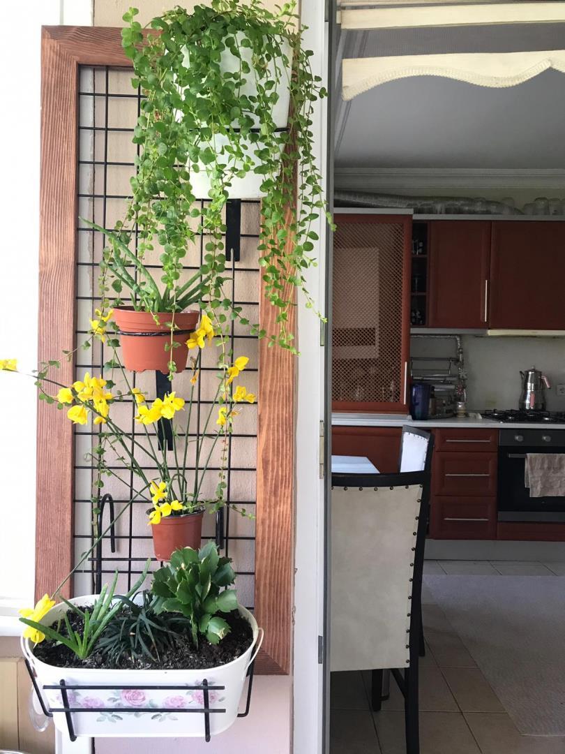 Dekoratif Çiçek Teli ( Dekoratif Hasır Tel )